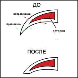 article_12_01.jpg