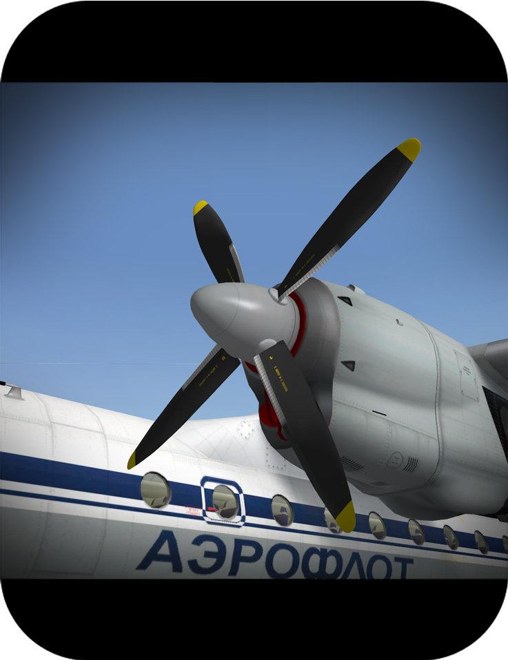 xp-an-24-006fu2p.jpg
