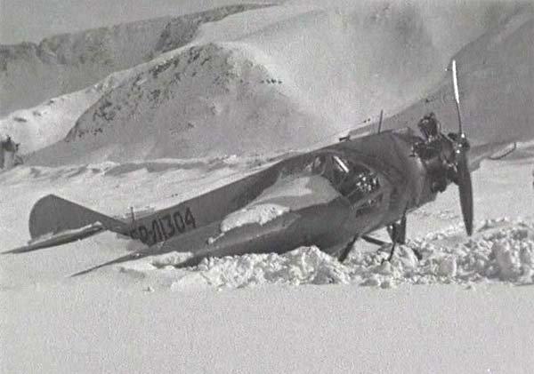 fanera-2.jpg