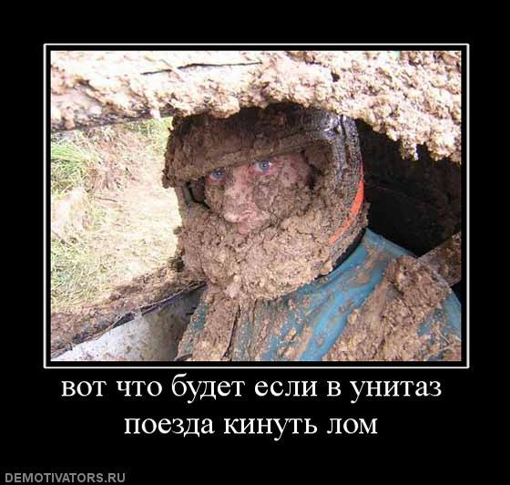 post-36762-12651297147_thumb.jpg