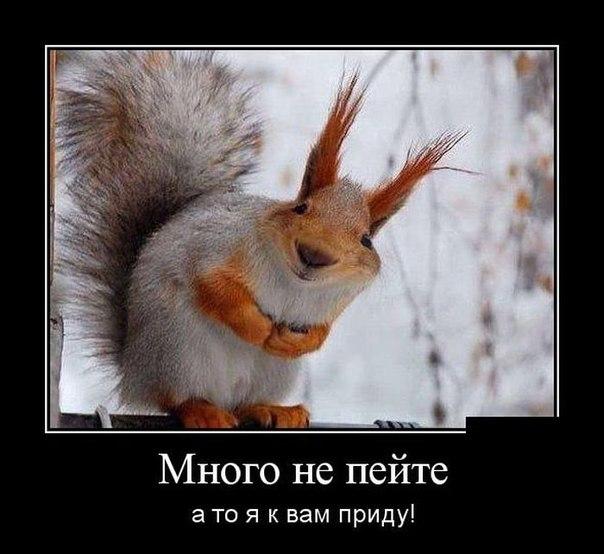 TkBKjtBcVHo.jpg.3d330b72414d362f1e312fb34d259e9b.jpg