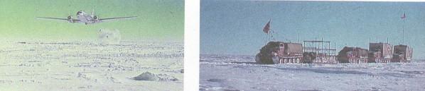 Il141.jpg